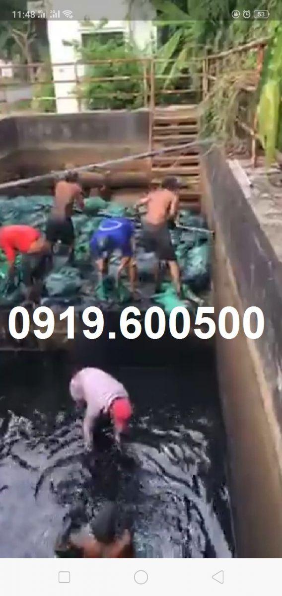 Hút hầm cầu khu công nghiệp phước đông 0838.5555.17
